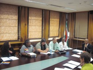 First Cape Town Task Force Meeting on Corrective Rape