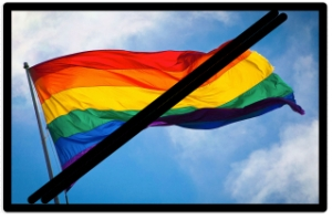 Gay_Rainbow_Flag_Creator_say_NO_Rainbow_Flags_at_Olympics_in_Sochi_Russia___O-blog-dee-o-blog-da 2-1