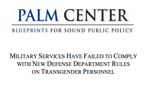 military report DOD Palm center