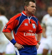 Nigel Owen, Referee,  Rugby World Cup, 2015.